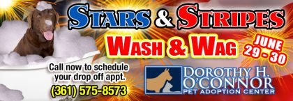 Stars and Stripes Wash & Wag (June 29th-30th)