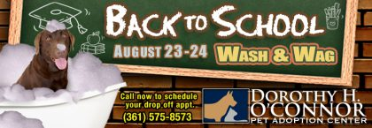Back to School Wash & Wag (August 23rd-24th)