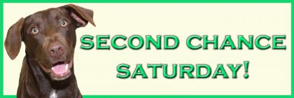 Second Chance Saturday Logo- Website