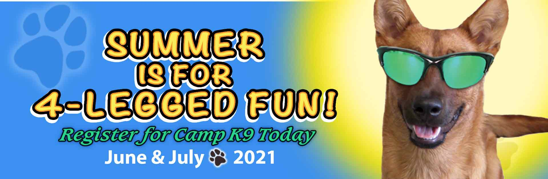 Summer is for 4-legged fun! Register for Camp K9 Today June &July 2021