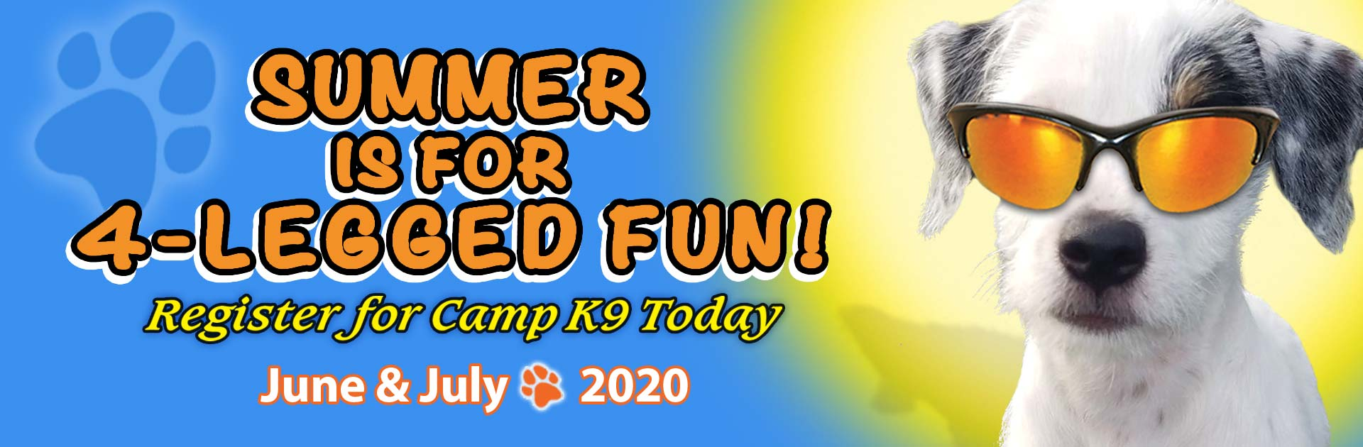 Summer is for 4-Legged Fun! Register for Camp K9 Today June & July 2020