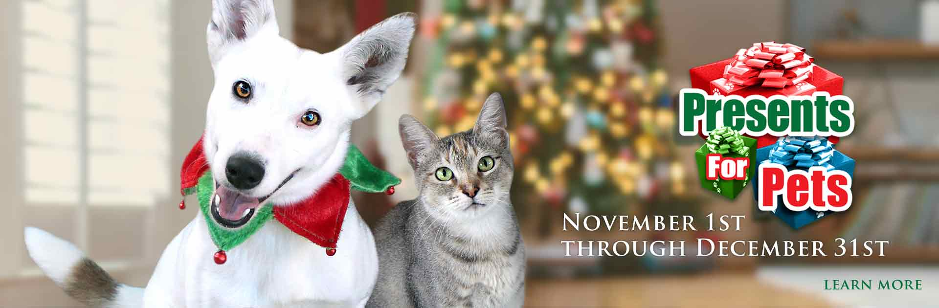 "Dorothy H. O'Connor Pet Adoption Center (DOCPAC) is having our annual ""Presents for Pets"" fund-raising event November 1st through December 31st, 2020."