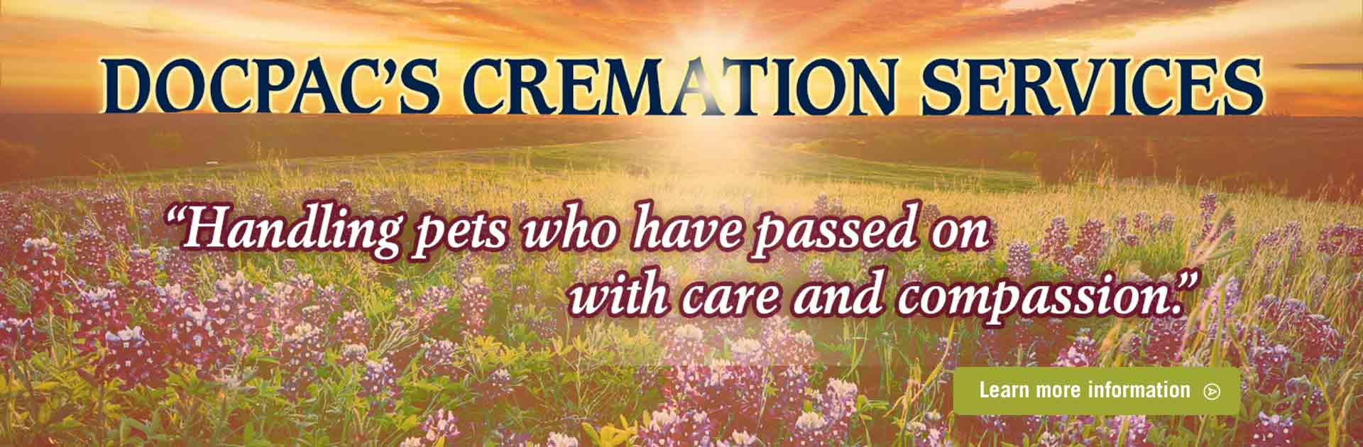 DOCPAC's Cremation Services (Image of a field of flowers and a sunset)
