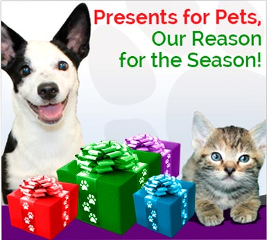 Presents for Pets, Our Reason for the Season!