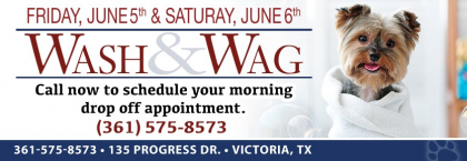 WASH & WAG (June 5th & 6th)