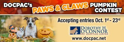 DOCPAC's Paws & Claws Pumpkin Contest