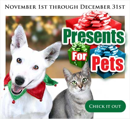 Presents for Pets